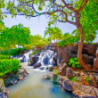 Tropical waterfall — Stock Photo #6544139