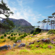 South African wilderness — Stock Photo #6544547