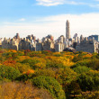 Manhattan skyline and Central Park, NYC — Stock Photo
