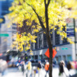 Springtime in New York — Stock Photo