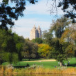 Central Park in the fall — Stock Photo