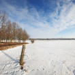 Winter landscape on a sunny day with blue sky — Stock Photo