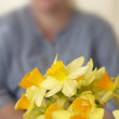 Beautiful daffodils indoor in front of an unidentifiable woman — Stock Photo