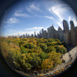 Central Park in the fall - New York, USA — Stock Photo #6545312
