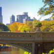 Central park, Manhattan, New York, USA - Stock Photo