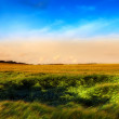 Photo of sunset in countryside at summertime — Stock Photo #6545564