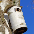 Stock Photo: Telephoto of bird house.
