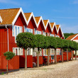 A photo of a series of red houses by the sea — 图库照片