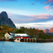 At the harbor - Lofoten, Norway — Stock Photo #6546822