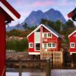 At the harbor - Lofoten, Norway — Stock Photo