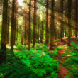 Pine forest — Stock Photo #6547140