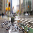 Stock Photo: Early morning - motion blurred