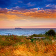Country sunset by the sea - Stock Photo