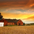 Old farmhouse in sunset - Stock Photo