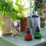 Garden table indoor — Stock Photo #6547413