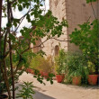 Old nunnery in Cyprus - Stock Photo