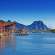 Lofoten - Norway — Stock Photo #6547440