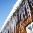 Thawing icicles — Foto Stock