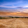 Sunset at the countryside - time for harvest — Stock Photo #6547687