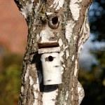Birdhouse (very sharp and detailed photo) — Stock Photo #6548090