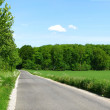 Stock Photo: Country road in Denmark