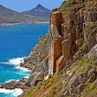 Coastal beauty around Cape Town — Stockfoto