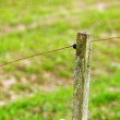 Stock Photo: Old fence post in the country