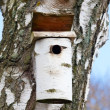 Birdhouse — Stockfoto #6548870