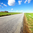 Countryroad in Denmark — Stock Photo