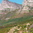 Table Mountain - South Africa — Stock Photo