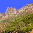 Table Mountain - South Africa — Stock Photo #6549268