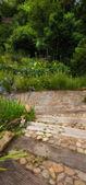 My African garden - trails in the garden — Stock Photo