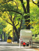 Central Park in early spring - horse carriage — Stock Photo