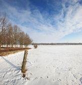 зимний пейзаж в солнечный день с голубым небом — Стоковое фото