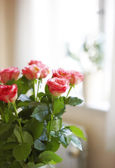 A photo of Roses indoor with window as background — Stock Photo