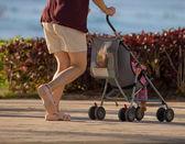 Walking legs - human diversity series — Stock Photo