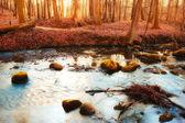 Herbstliche landschaft — Stockfoto