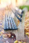 Een lens wazig foto een bankje in de herfst. central park. — Stockfoto