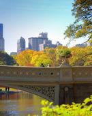 Central park, Manhattan, New York, USA — Stock Photo