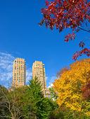 Piękno central parku, nyc, manhattan — Zdjęcie stockowe