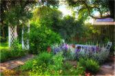 Sunset garden — Stock Photo