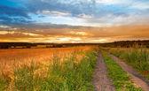Pôr do sol, a paisagem e a estrada — Fotografia Stock