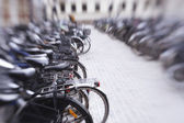 A lens blurred photo of a group of bikes — Stock Photo