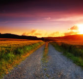 Sunset, countryside and road — Stock Photo