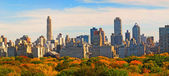 Central Park in the fall - New York, USA — 图库照片