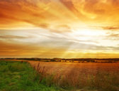 At the countryside - harvest sunset — Stock Photo