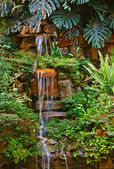 A beautiful small tropical waterfall — Stock Photo