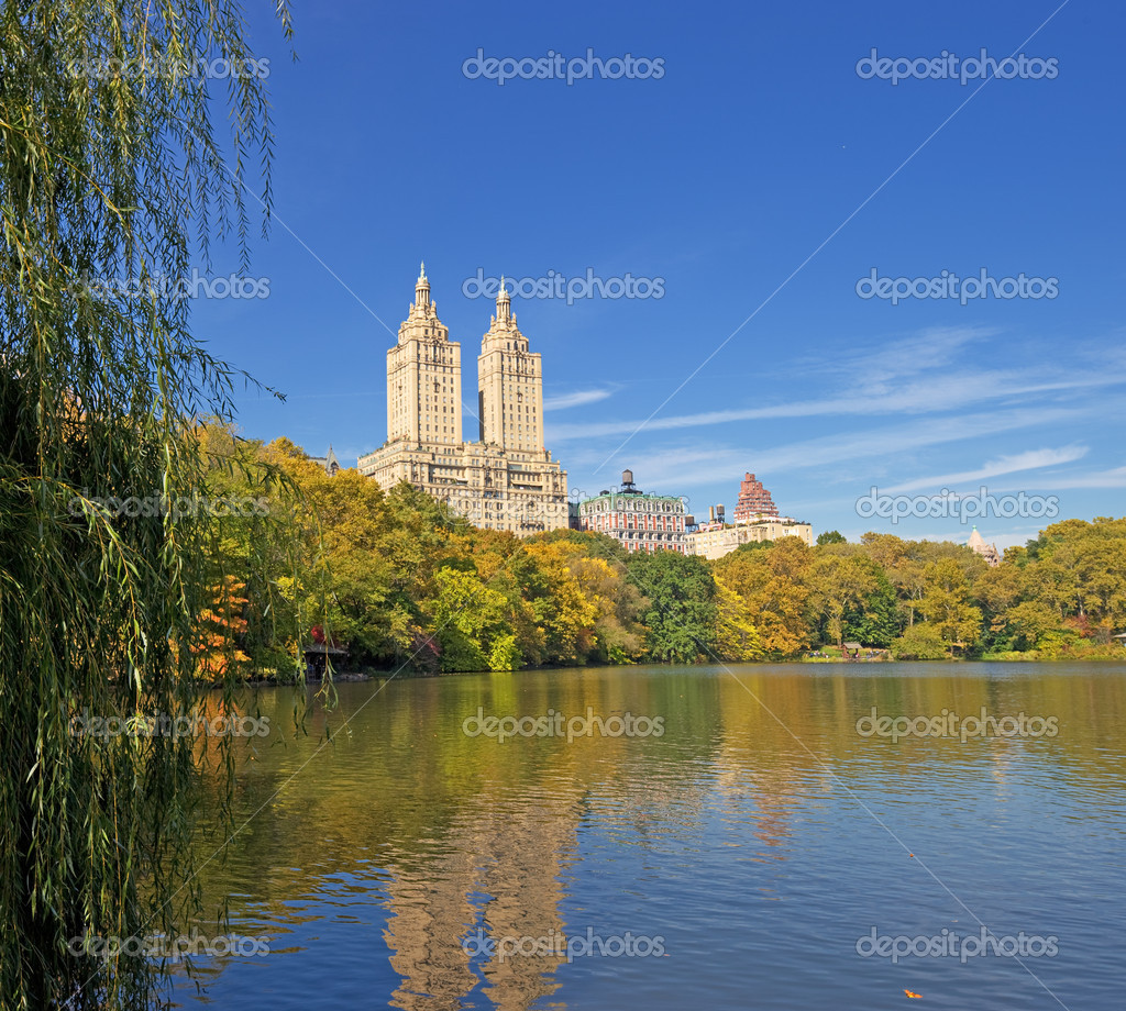 The beauty of Central Park, NYC, Manhattan — Stock Photo #6544107