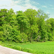 Country road in Denmark — Stock Photo #6551183