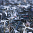 Parked bikes — Stock Photo